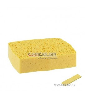 Sponte Compressed pop-up Sponge