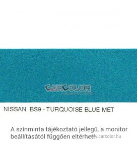 Nissan Metallic Base Color: BS9
